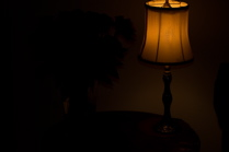 Dark - Rose Lamp